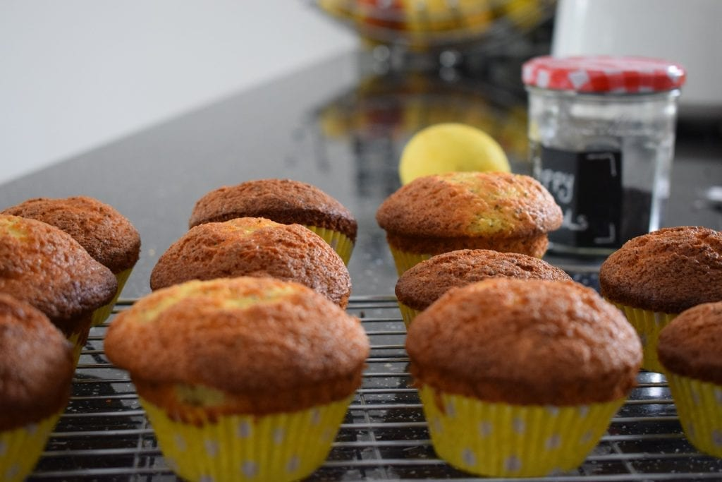 Lemon and poppy seed protein muffins gluten free recipe