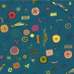 Ruth Cartwright Textile designs