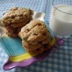 chocolate chip and fudge cookie recipe