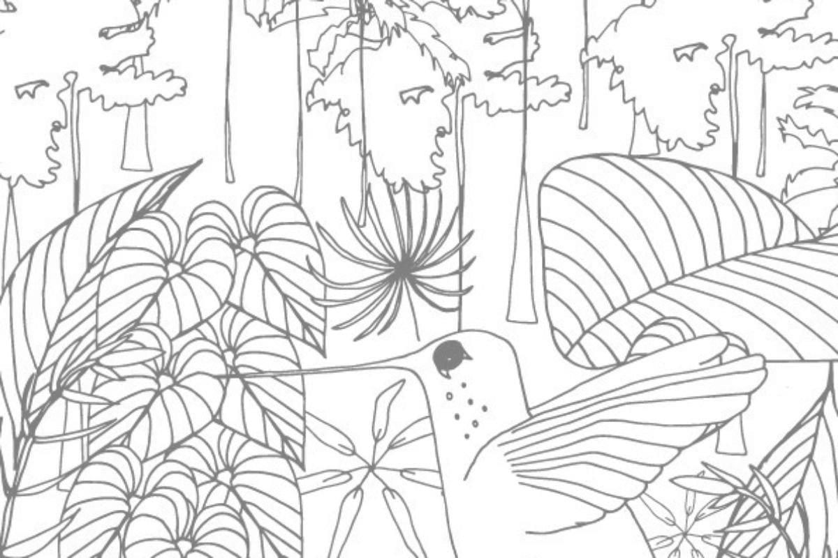 61 Fantastic Tropical Rainforest Coloring Pages Image Inspirations ... | 800x1200